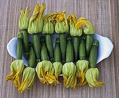 Цветки кабачка